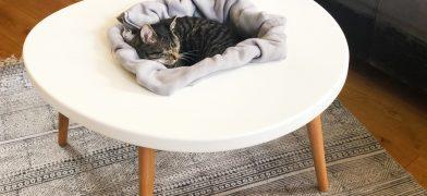 Katzentisch, Wohnzimmertisch – Spiegeleitisch by mIRo Studio