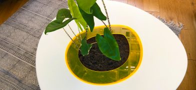 Pflanzen-Tisch, Wohnzimmertisch – Spiegeleitisch by mIRo Studio